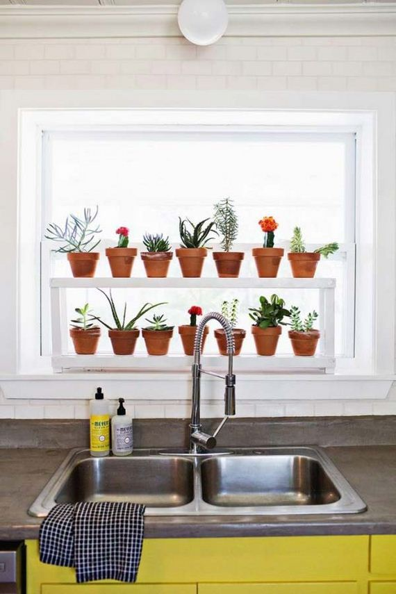 17-indoor-garden-projects