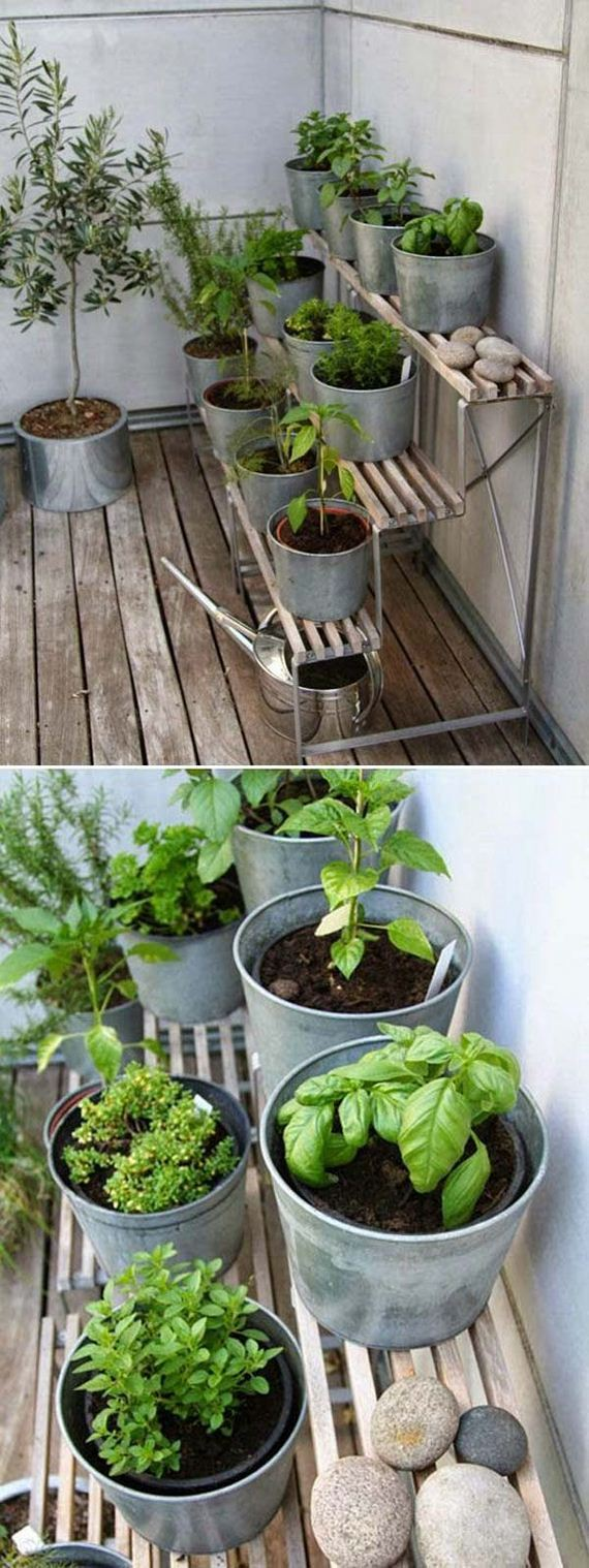 18-indoor-garden-projects