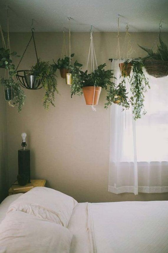 19-indoor-garden-projects
