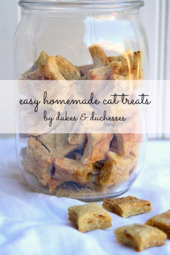 22-Homemade-Pet-Recipes