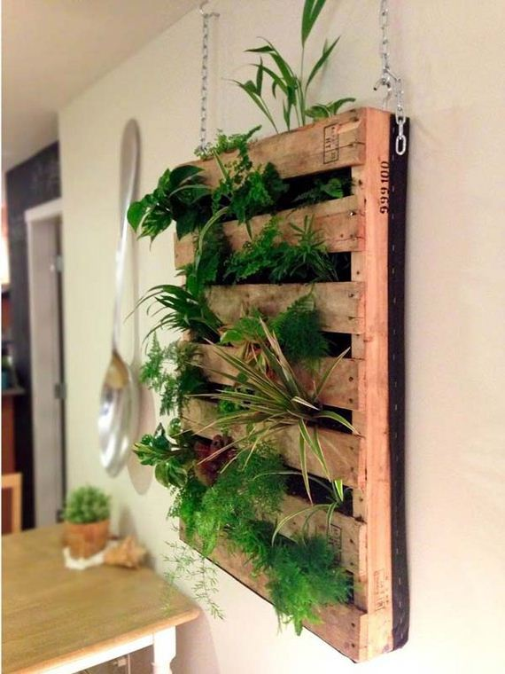 22-indoor-garden-projects