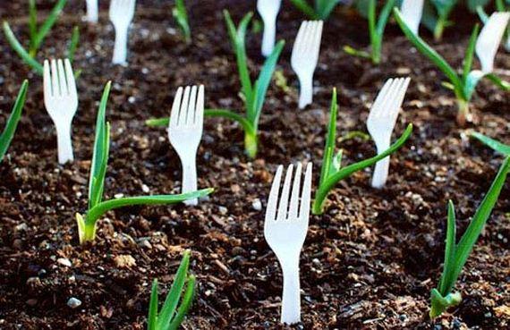 23-Gardening-Tricks