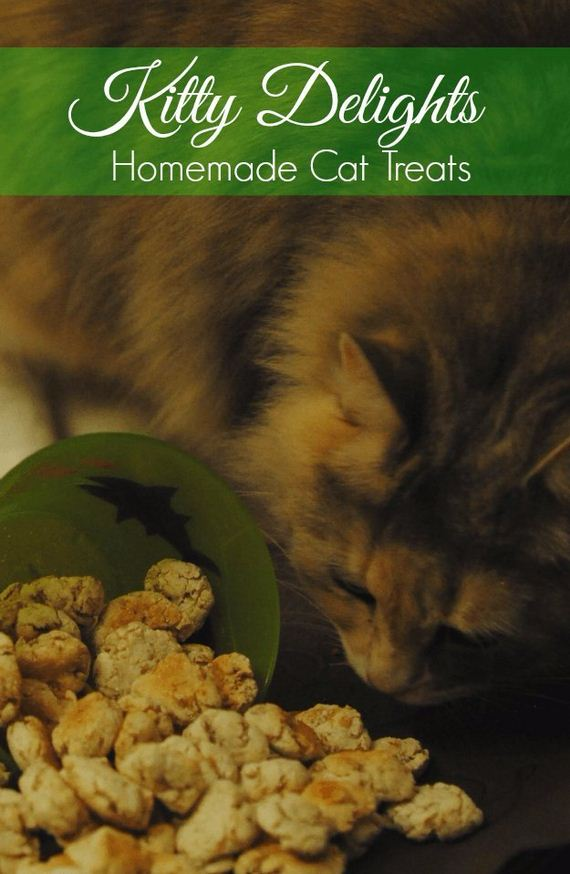 Diy Pet Recipes For Cats And Dogs