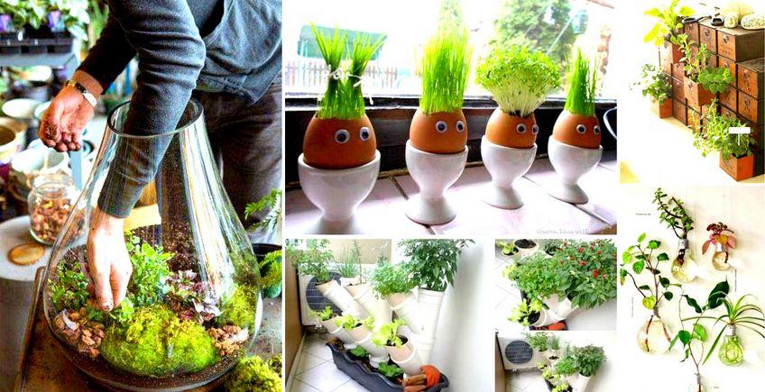 Cool Miniaturized Indoor Garden Tutorials