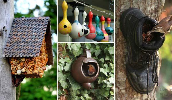 Amazing DIY Bird Houses