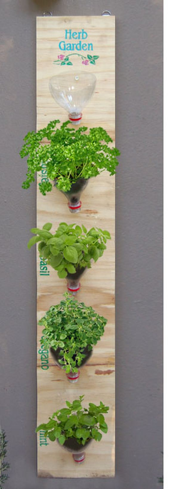 Hanging Herb Garden Kitchen Amazing Ideas For Cheap Or Free Herb Containers