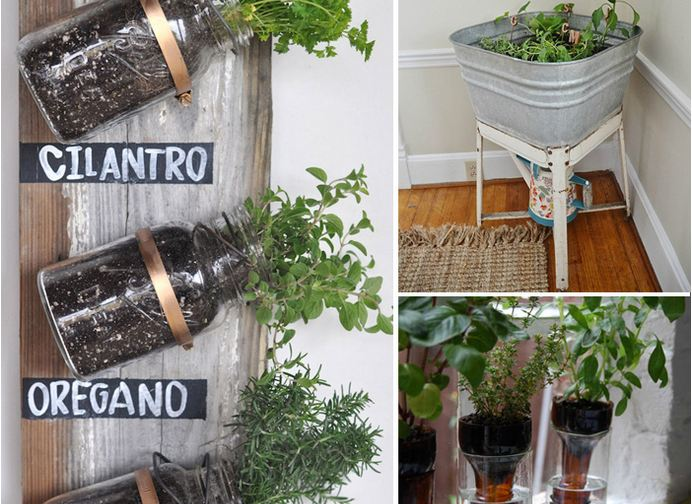 Amazing Ideas for Cheap or Free Herb Containers