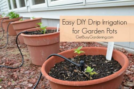 04-diy-drip-irrigation