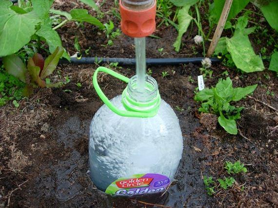 08-diy-drip-irrigation