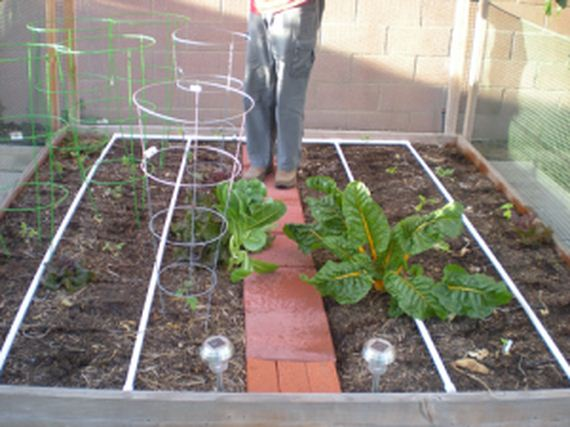10-diy-drip-irrigation