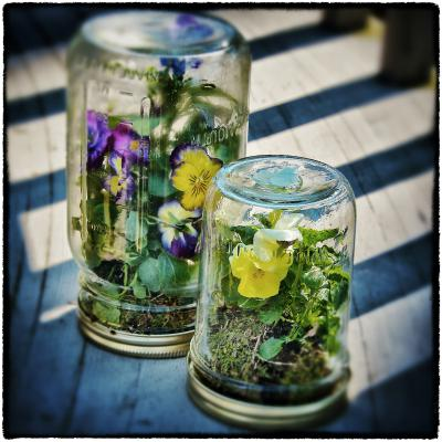 11-Amazing-Mason-Jar-Gift-Ideas-Free-Printable-Tags