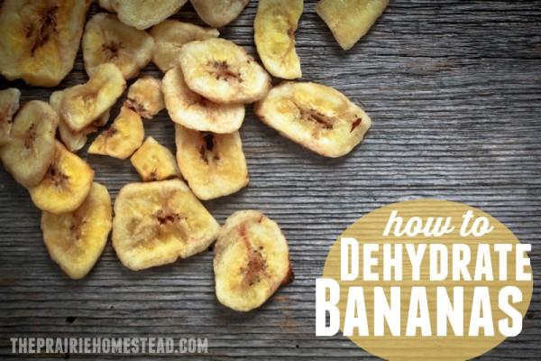 banana-600x400
