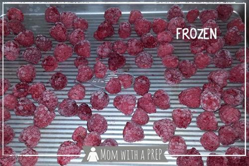 momwithaprep-dehydrate-raspberries8