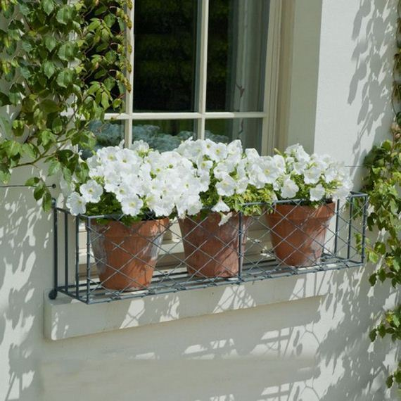 13-window-box-ideas
