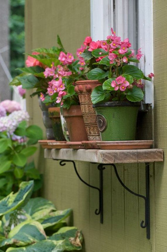17-window-box-ideas