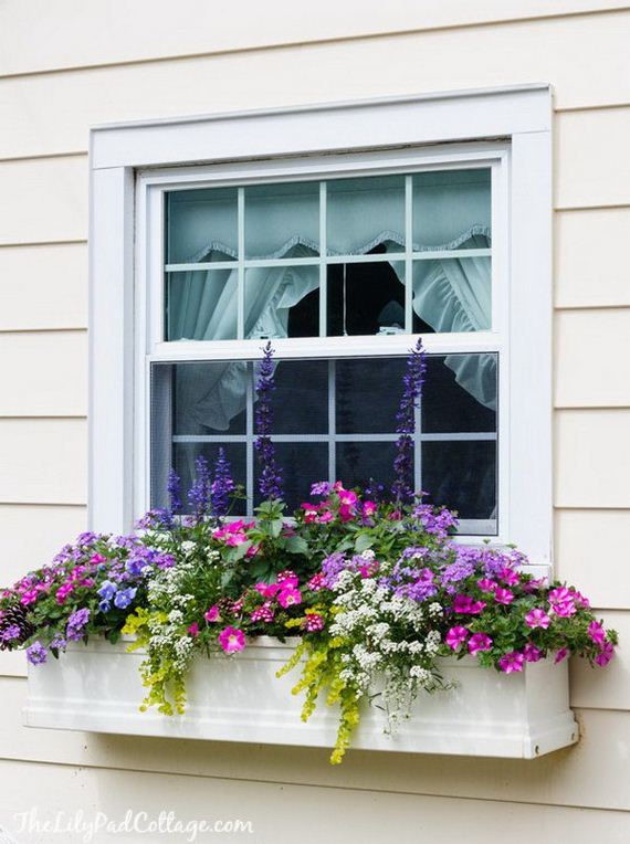 19-window-box-ideas