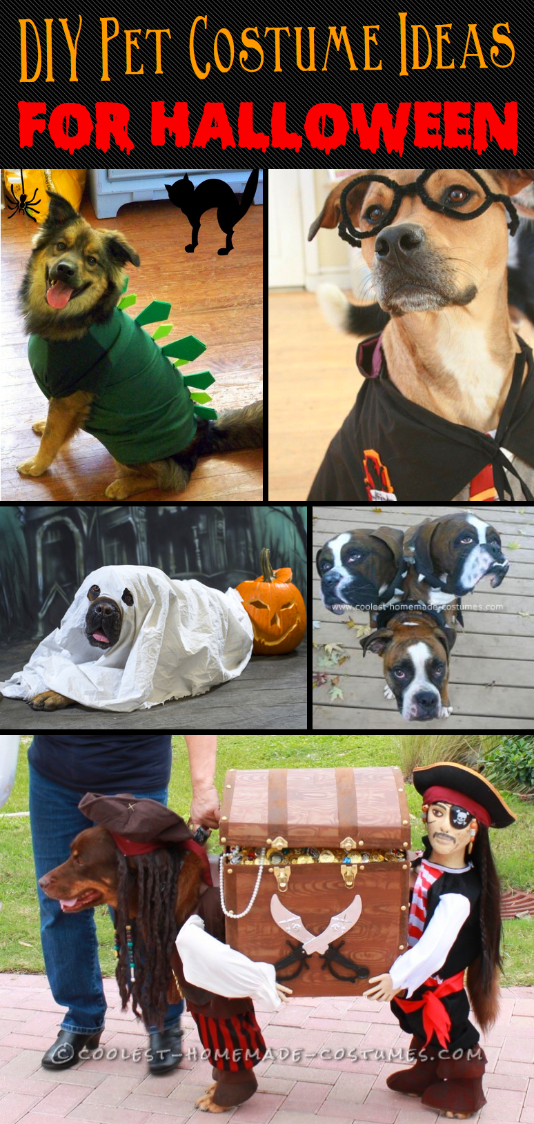 20-incredibly-adorable-yet-simple-diy-pet-costume-ideas-for-halloween