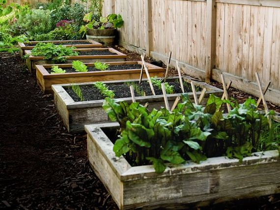 12-raised-garden-beds