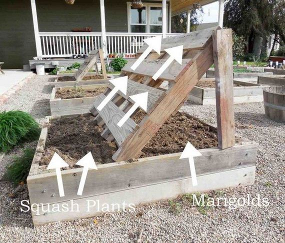 23-raised-garden-beds