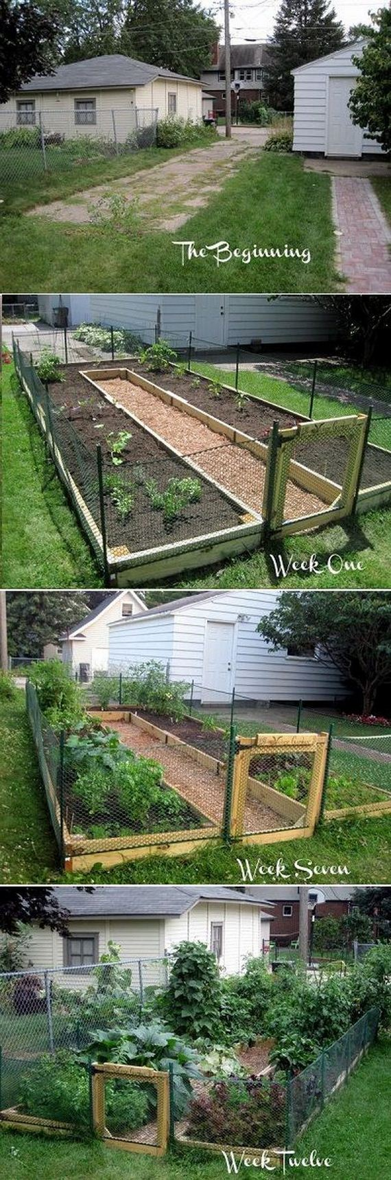 4-raised-garden-beds