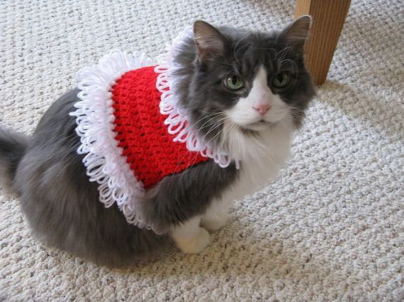 Cute and Warm Pet Crochet Patterns