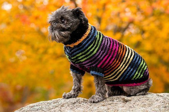 13-knitting-crochet-patterns