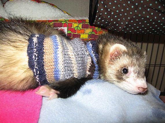 14-knitting-crochet-patterns