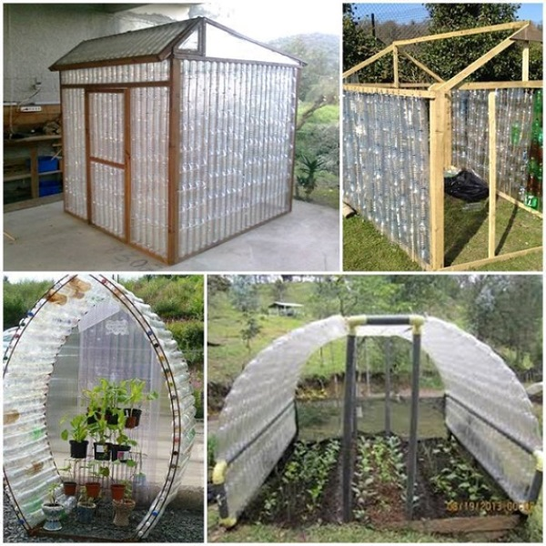 Diy plastic bottle greenhouse for Homemade greenhouse plastic