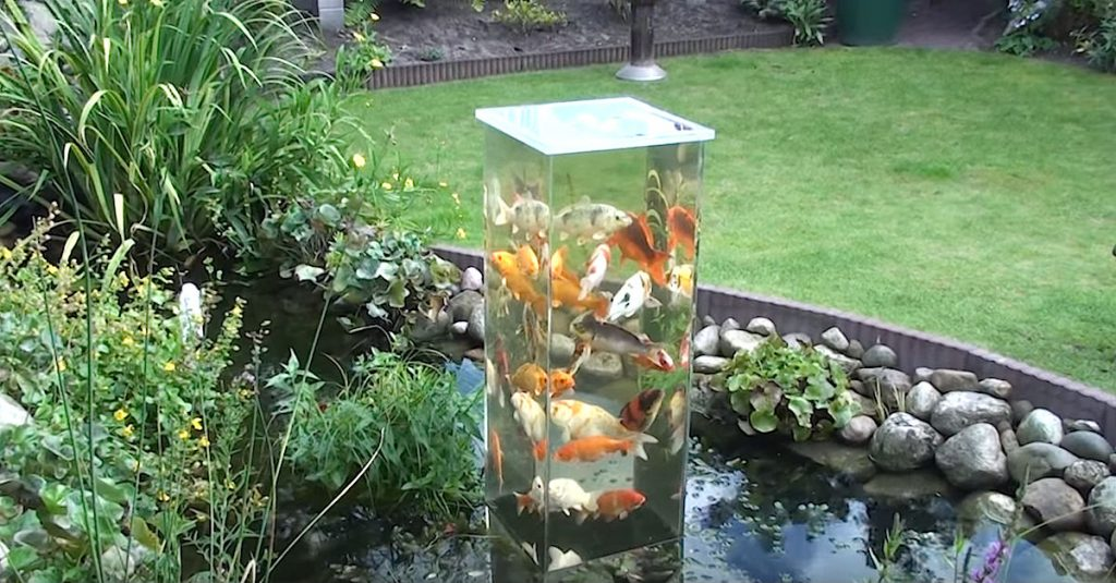 Awesome Lookout Tower For Fish