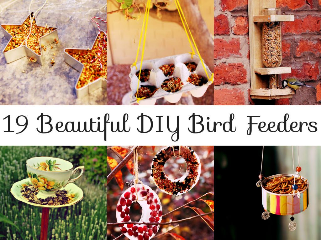 Beautiful DIY Bird Feeders