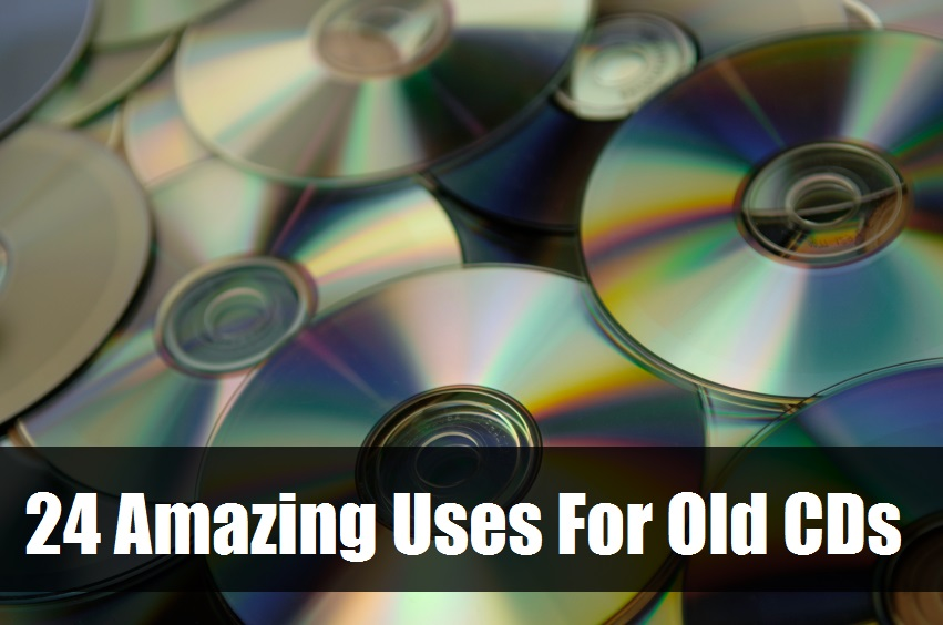 Amazing Uses For Old CDs