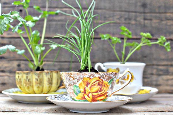 Cool Ways To Up-Cycle Teacups
