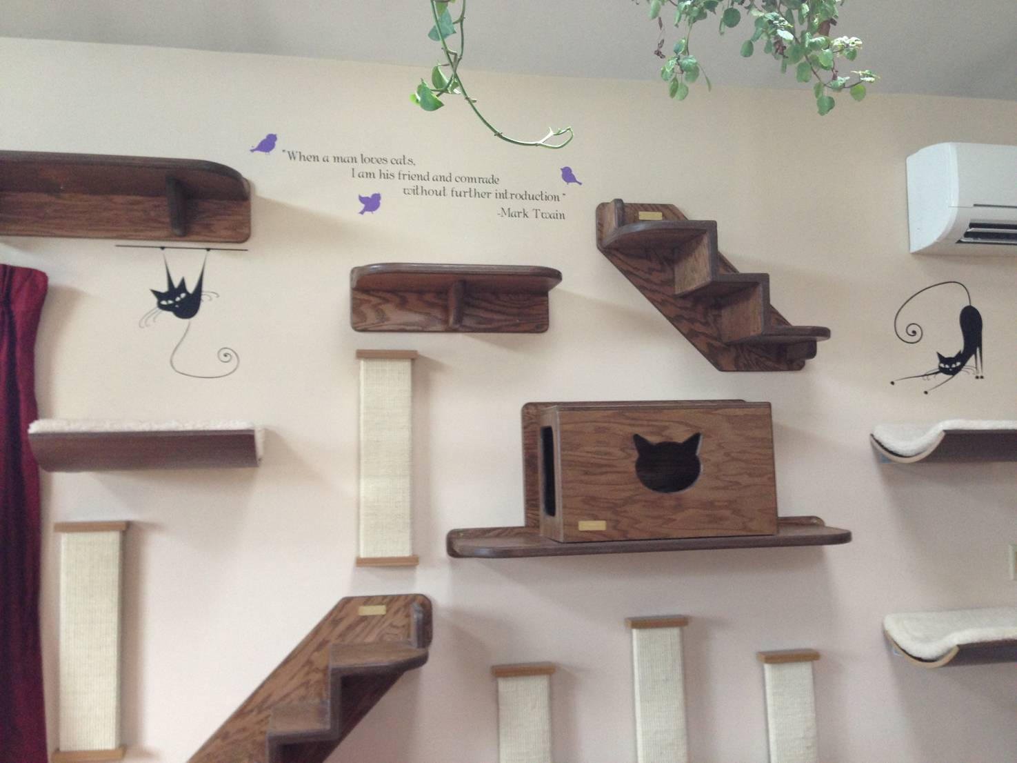 Cute Diy Projects For Cat Lovers