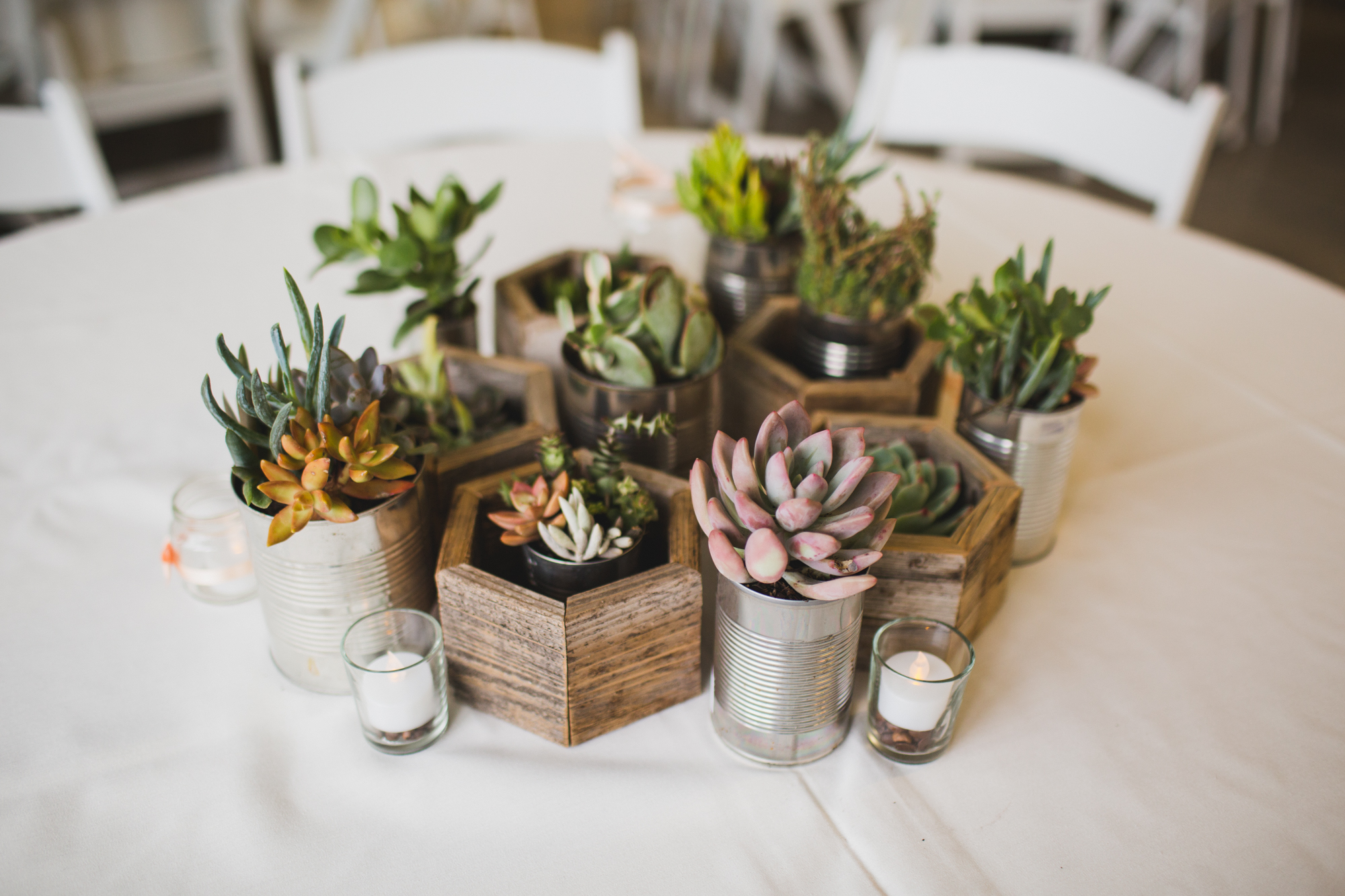Amazing diy wedding centerpieces 2 succulents in recycled planters solutioingenieria Gallery