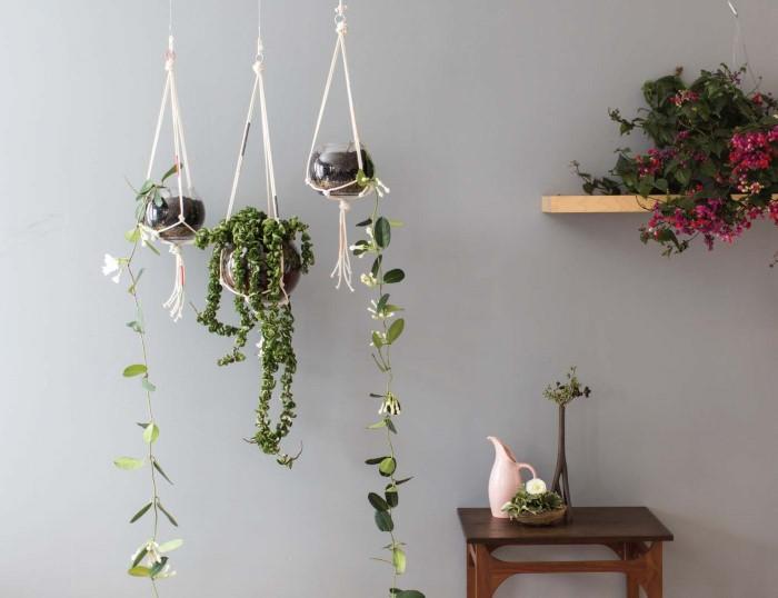 Amazing DIY Macrame Plant Holders