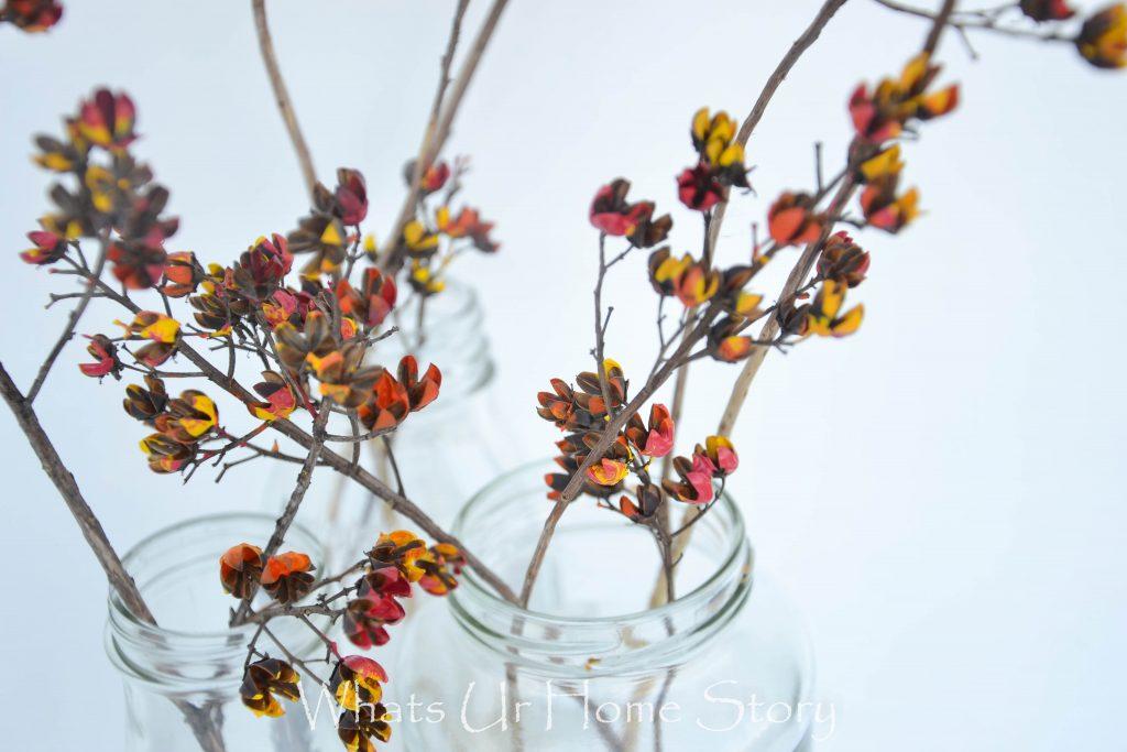 Amazing Dried Flower Crafts