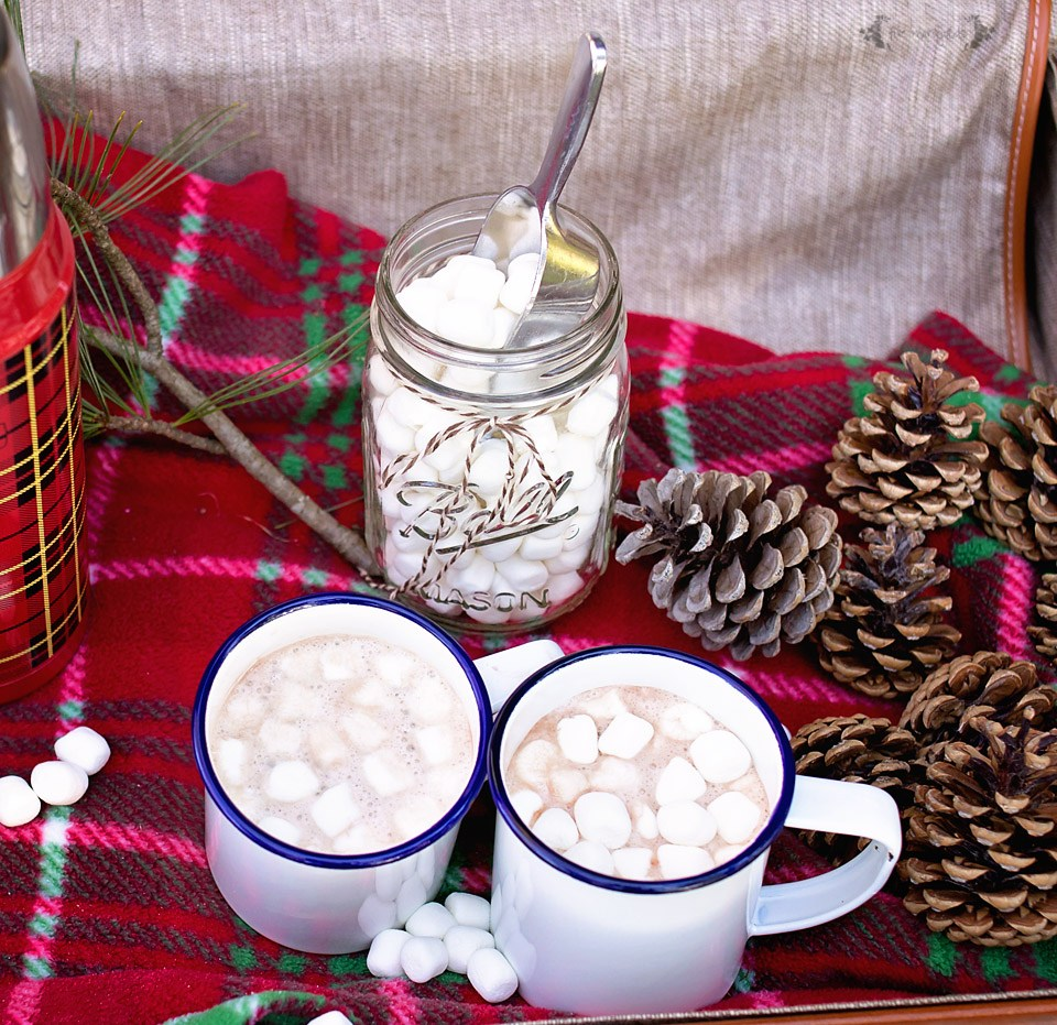 15 Hot Homemade Drinks For The Holidays