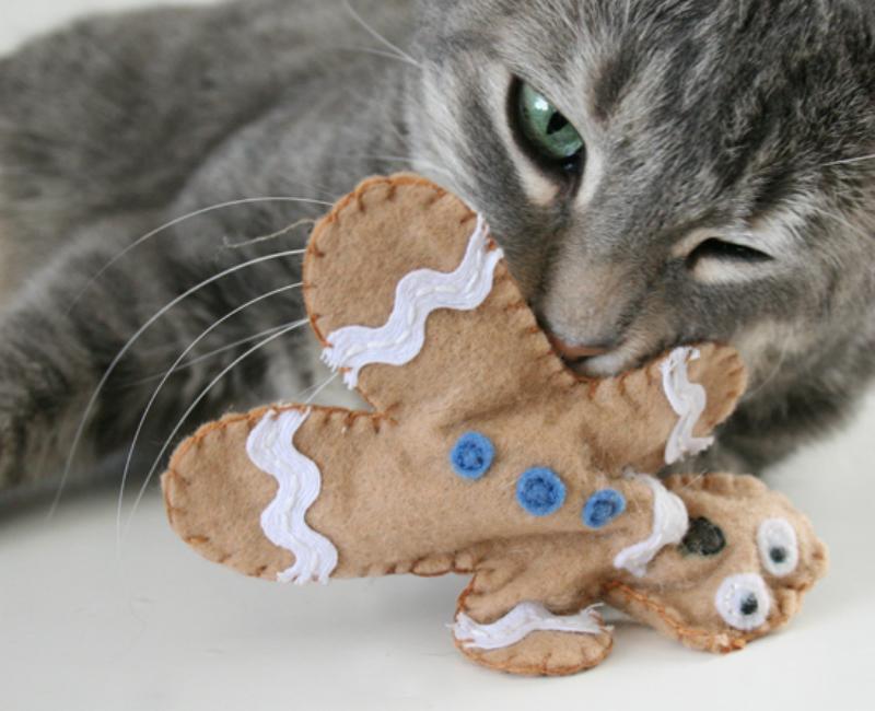 Cool DIY Cat Toys