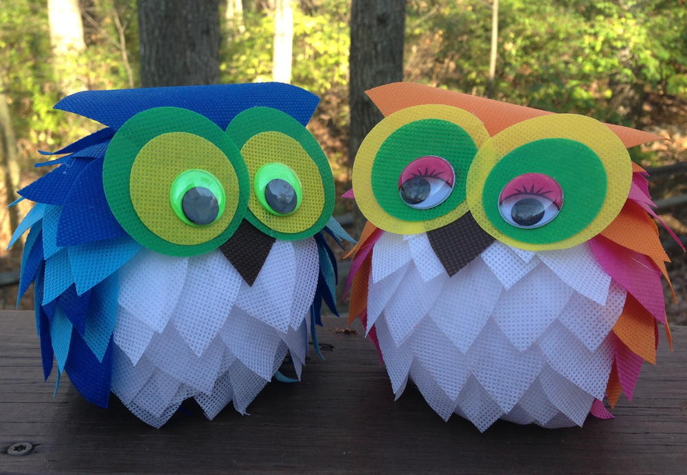 Cute Owl Themed Crafts
