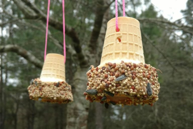Unique DIY Bird Feeders