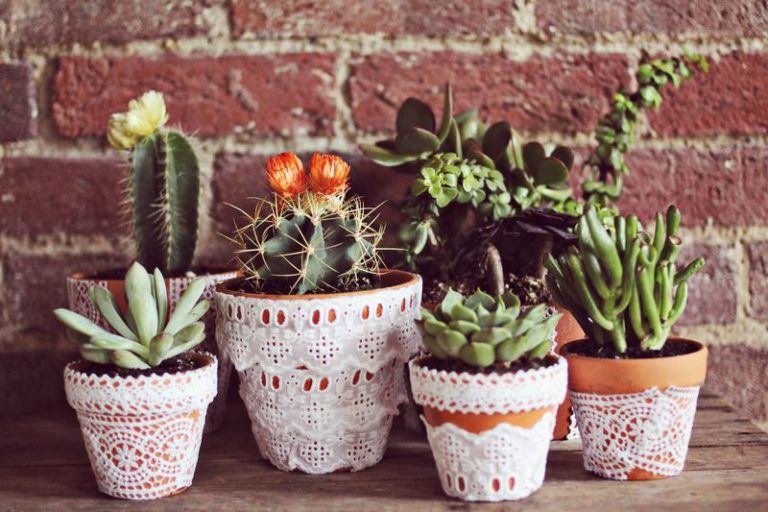 12 Amazing Lace DIY Projects