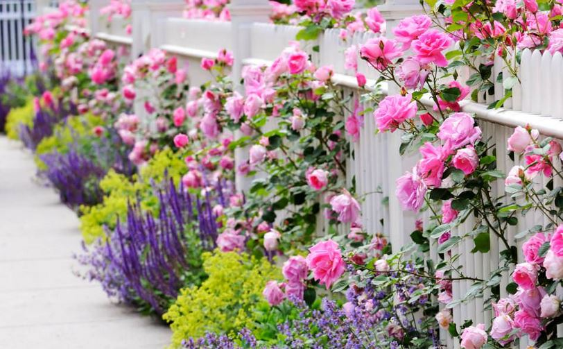 Increase The Value Of Your Home With These Landscaping Ideas