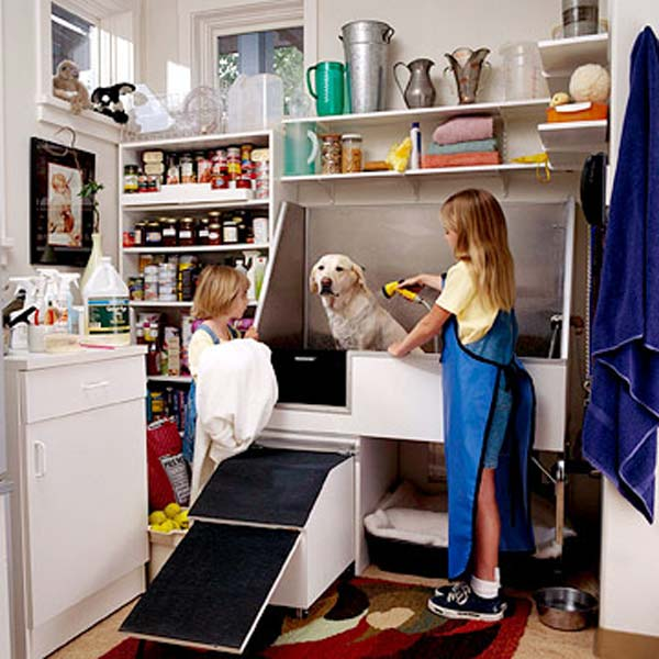 15 Awesome Bathroom Ideas For Your Doggies