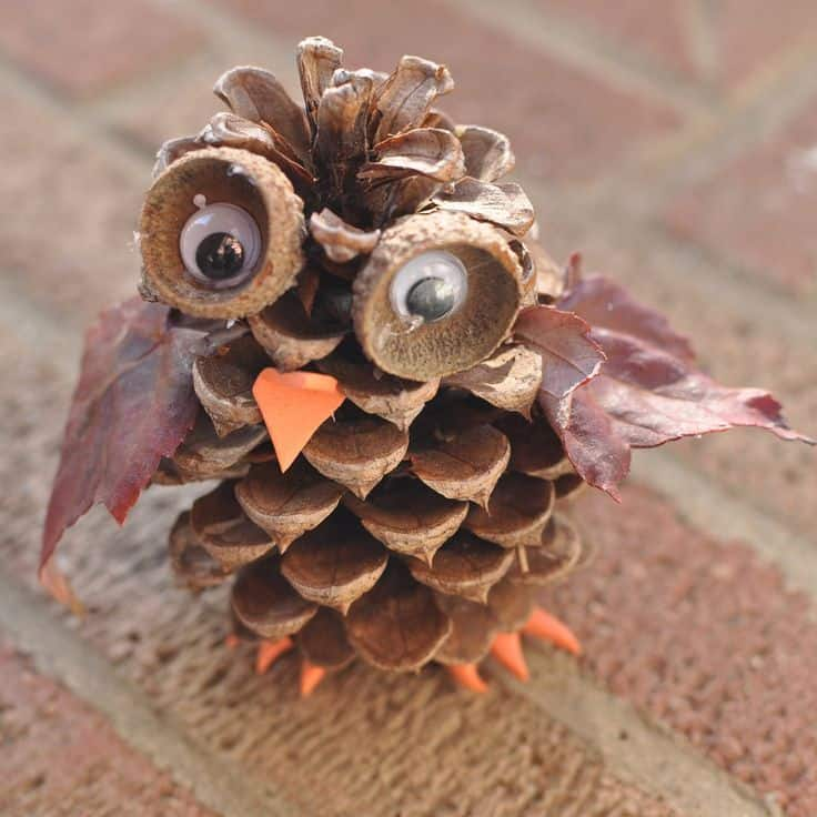 12 Amazing Crafts Made From Nature
