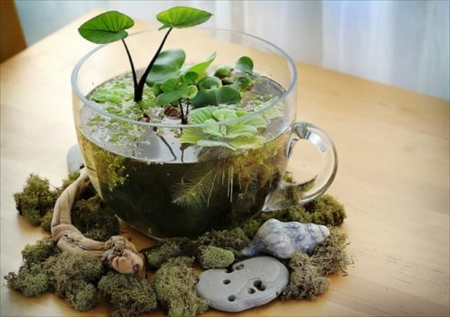 12 Amazing DIY Indoor Garden Ideas